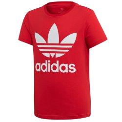 Adidas TREFOIL TEE (ED7795)